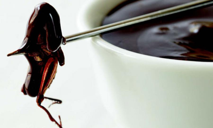 Bugging Out: 5 Insane Meals Made with Insects