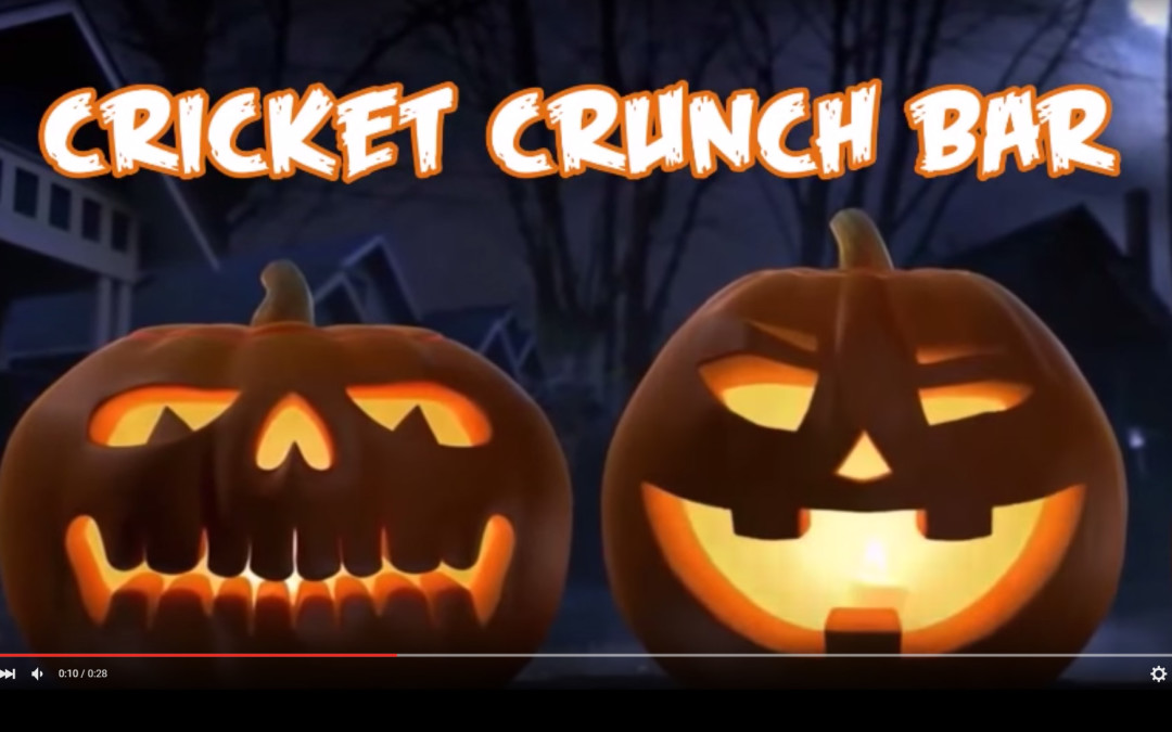 Our Halloween Video for Cricket Crunch Bars