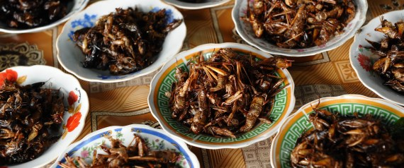 Eating Bugs Has Never Been More Popular, But Will It Ever Go Mainstream?